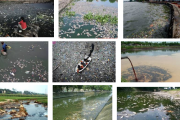 Cảnh báo! Tình trạng ô nhiễm nguồn nước sinh hoạt đang ở mức báo động
